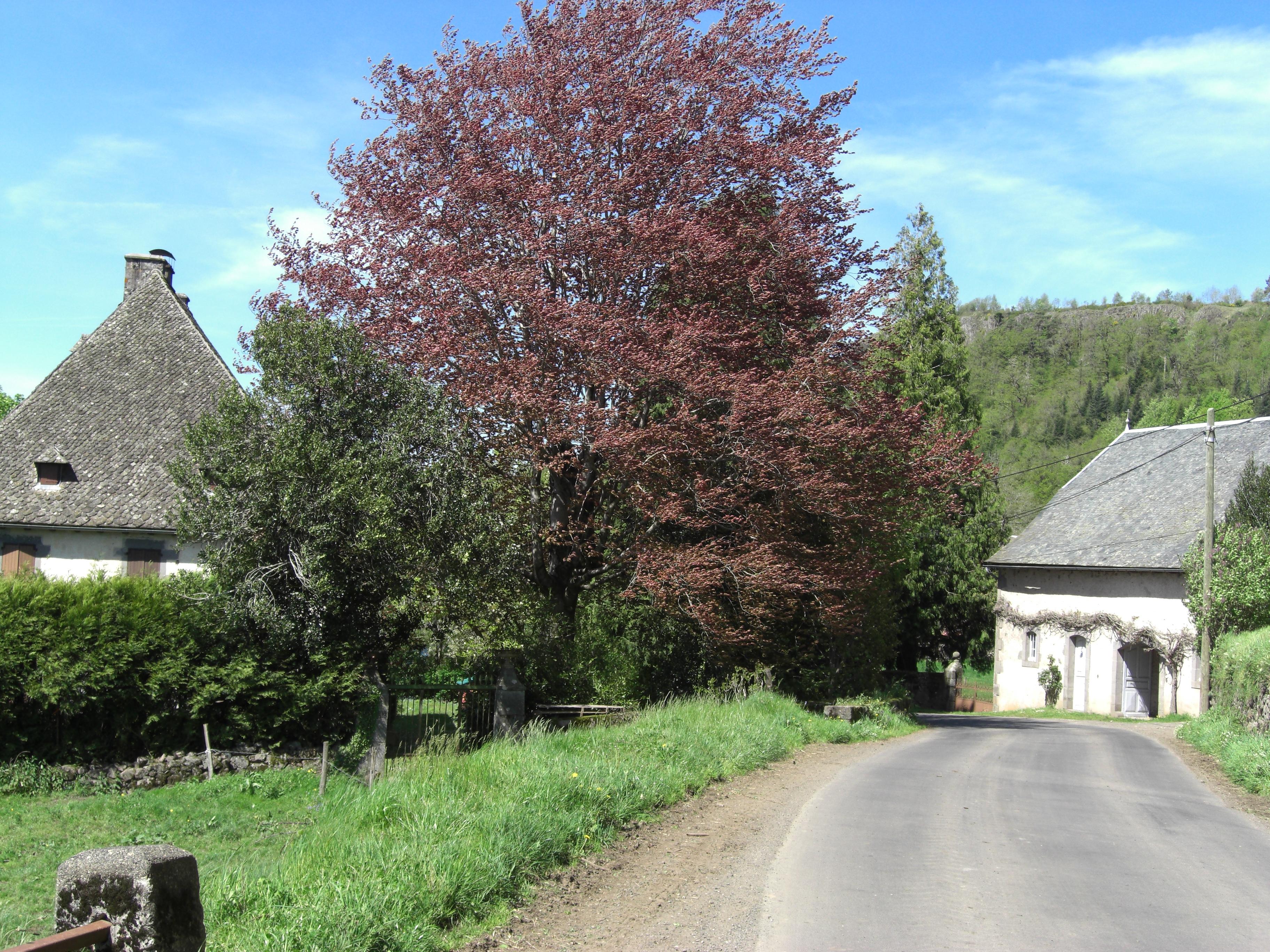 Le Village de Loubejac